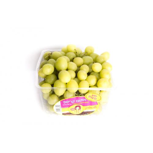 ענבים לבנים ללא חרצנים
