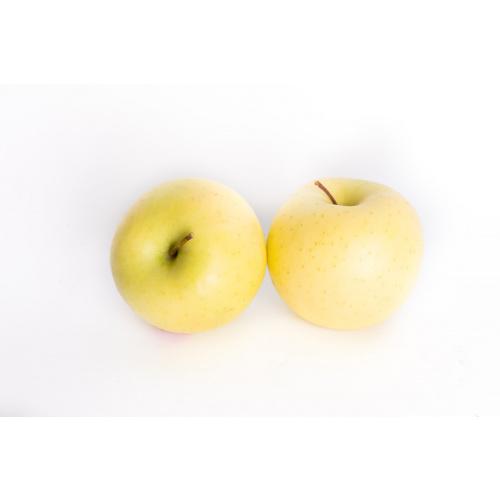 תפוח עץ זהוב